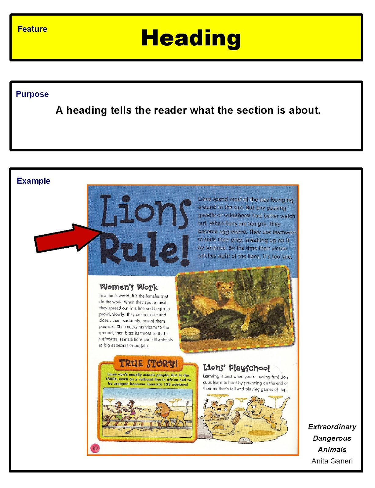 Nonfiction Text Features on Text Feature Freebie