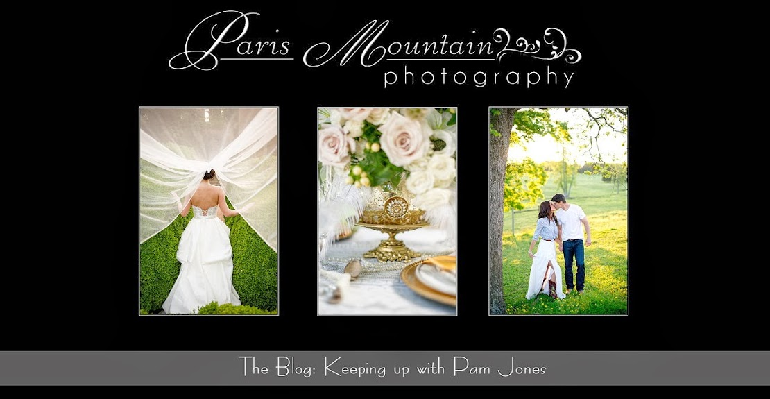 Paris Mountain Photography Blog