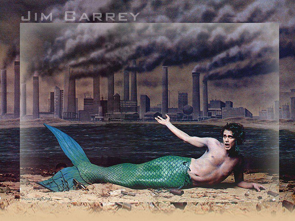 http://1.bp.blogspot.com/-yR1vzOjF01A/TlvTrWjw-xI/AAAAAAAADGg/qoctfuayCfw/s1600/Jim-The-Mermaid-jim-carrey-1413887-1024-768.jpg