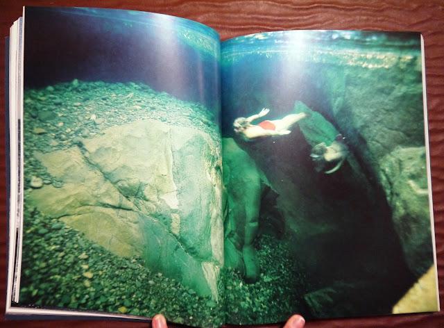 Wild Swim by Kate Rew book