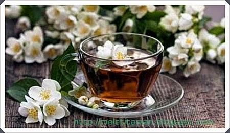 Khasiat Bunga Melati untuk Kecantikan dan Kesehatan Kulit