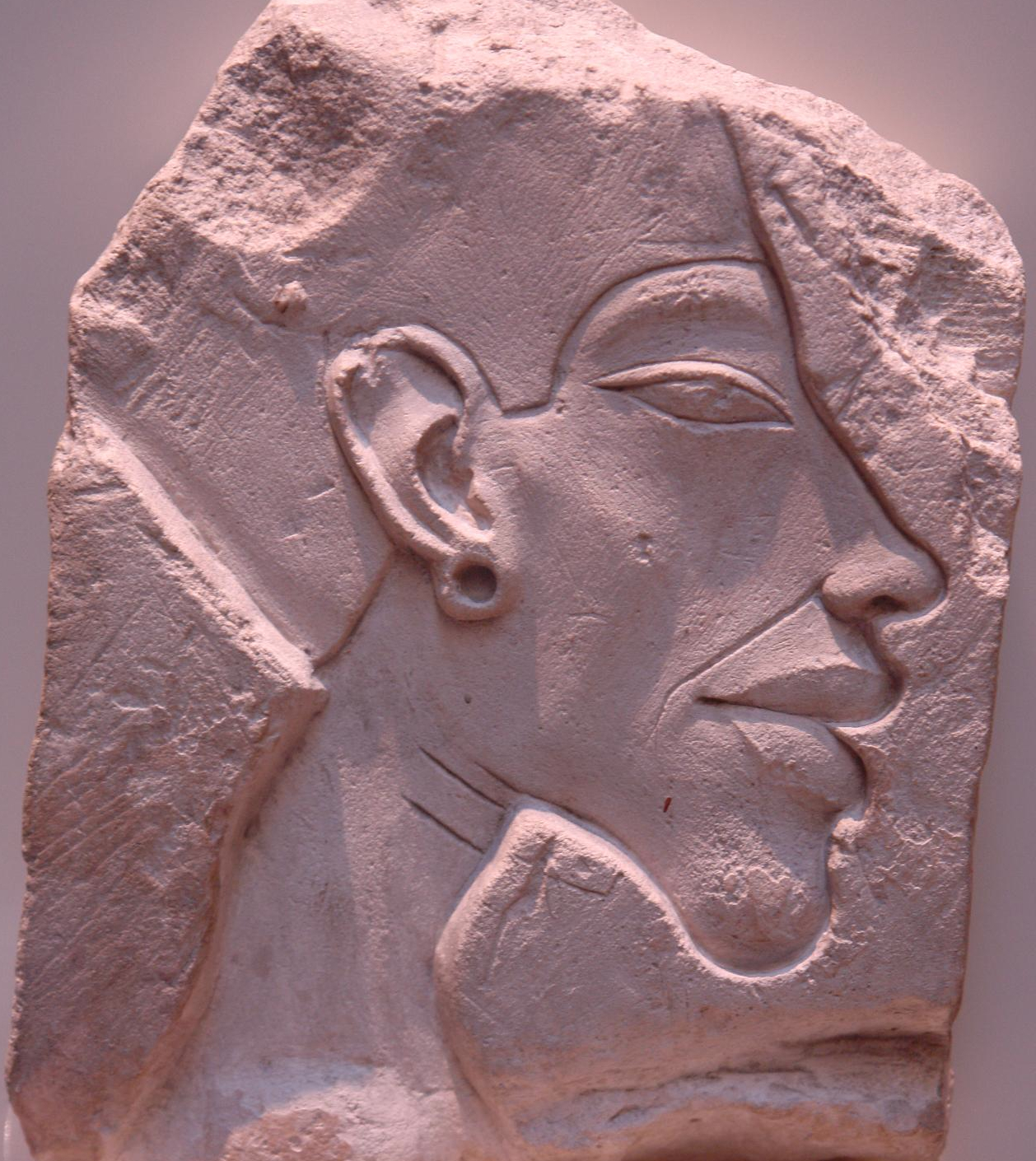 akhenaten biography essay Nefertiti - biography essay database with free papers will provide you with original and but after the 14th year of akhenaten's rule, nefertiti disappears.