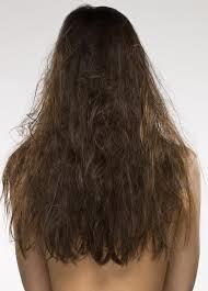 perawatan rambut natural alami natural hut