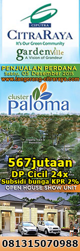 Cluster Paloma