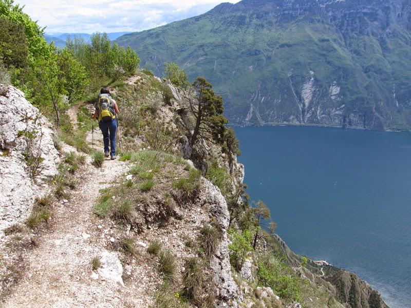 Escursionismo a 360 creste della mughera e punta dei for Le pigne dei larici