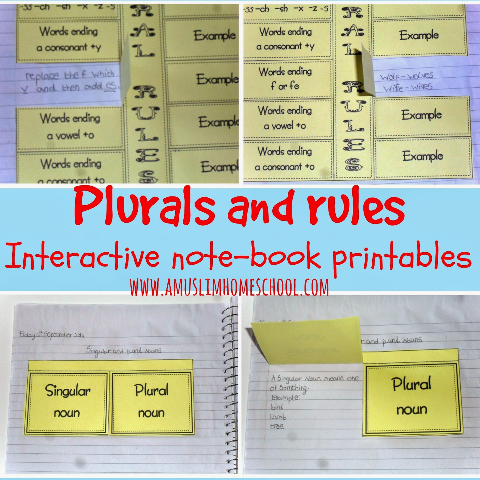 Plural Nouns Rules and Examples