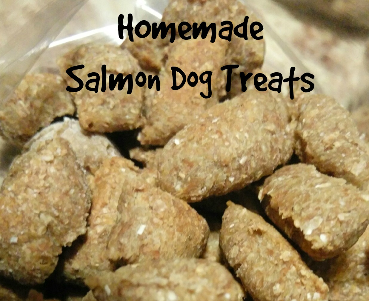 I decided to make him Salmon Treats. I took my basic recipe and instead of adding veggies I added canned salmon.