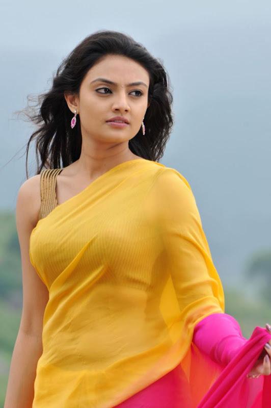 Nikitha Narayan Cool Saree Stills Nikitha Narayan Hot Saree Photos glamour images