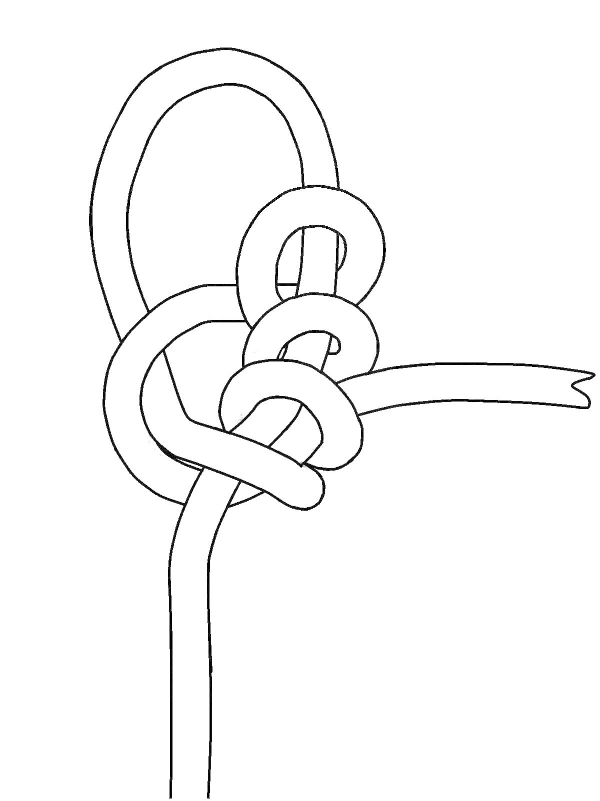 new approaches with knot tying  how to electronically draw