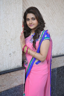 Manochitra Picture Gallery in Pink Saree at Malligadu Marriage Bureau Movie Location