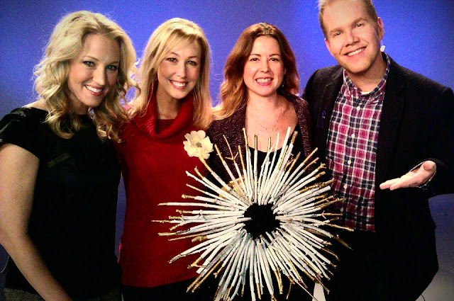 SuburbanSpunkDesign.com : My TV Debut + DIFFA's Holidays By Design Event