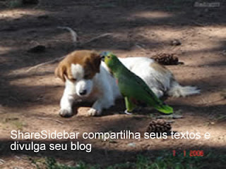 sharesidebar-compartilha-textos-e-divulga-blogs