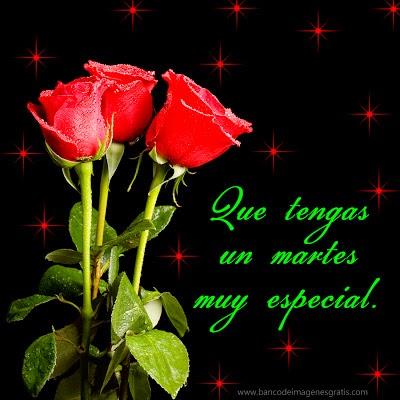 feliz martes especial