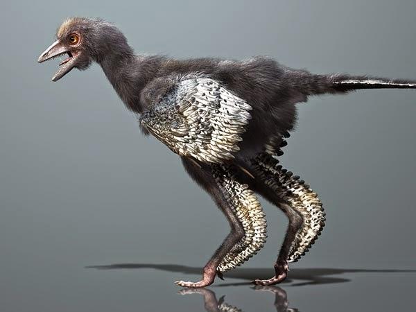 di yakini dinosaurus adalah nenek moyang burung