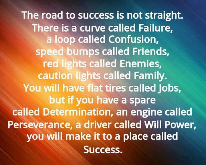 The road to success is not straight. There is a curve ...