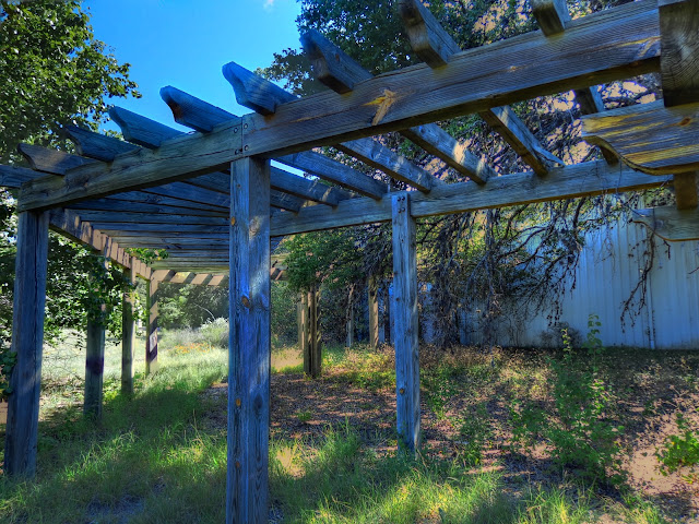 Abandoned Winery pergola arbor one