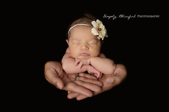 Newborn Baby Photography Oahu