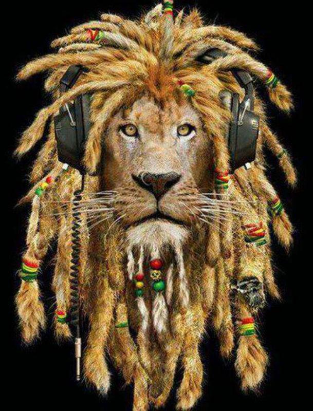 Não tente ser falso com leão, ele percebe e odeia.