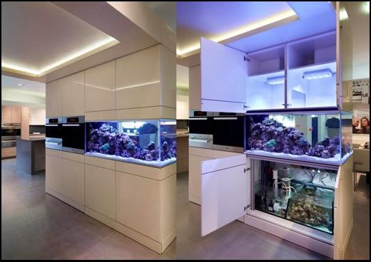 Aquarium Installation in kitchen Aquafront, Akil Gordon Beckford Lisa Melvin Design
