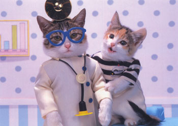 two cats dressed as doctors