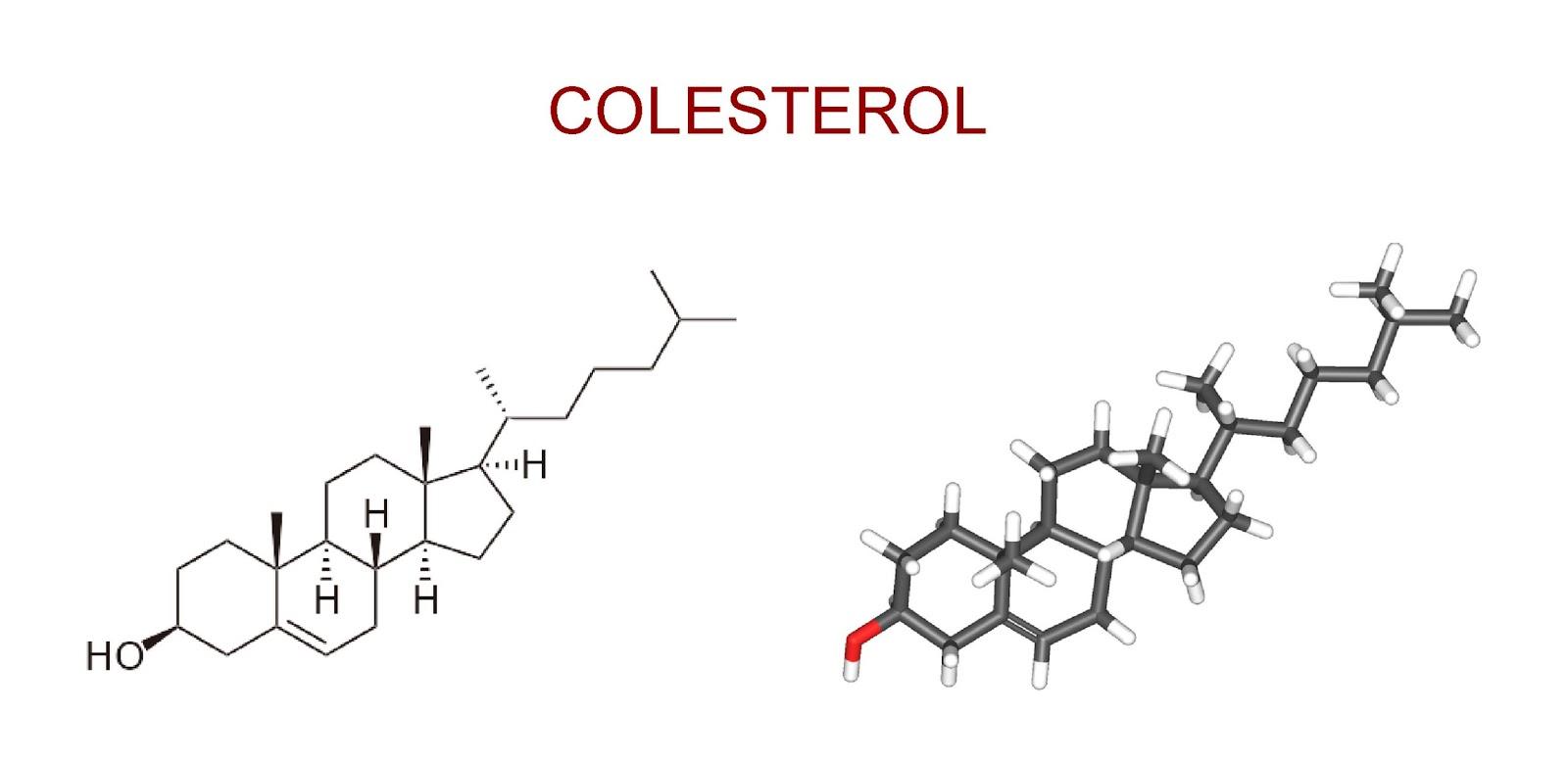 Estructura química de la molécula de colesterol