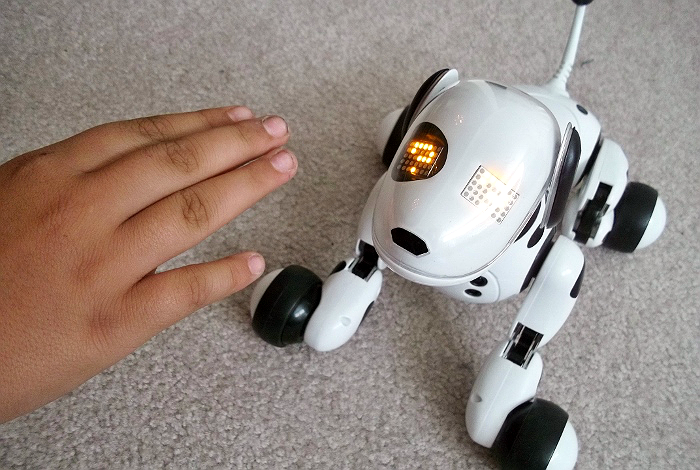 Or your back teach kids responsibility with zoomer the robotic dog