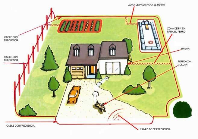 El mundo del gadget sistemas de contenci n para perros y for Ahuyentar perros del jardin