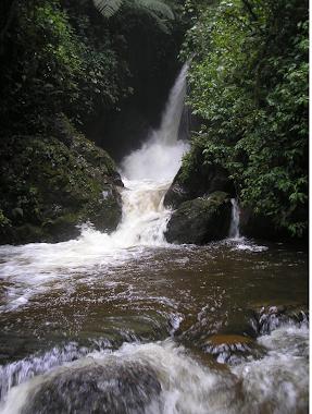 Rio Quindio