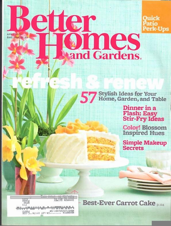 Better Homes & Gardens Kitchen Remodel | Shannon\'s Blog