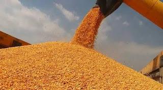 2020l2 Üretim Sezonu Çiftçi Kayıt Sistemi ÇKS başvuruları başladı.