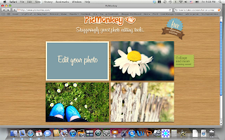 picmonkey, tutorial, picture editing, blog button, grab box