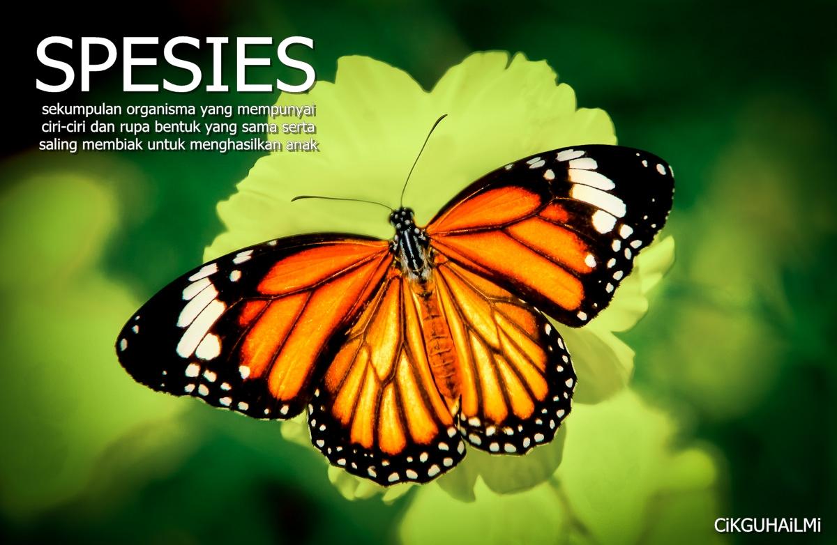 Saling Bersandaran Antara Organisma Hidup : Spesies ...