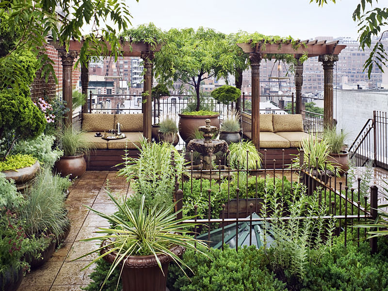 A Beautiful Simple Rooftop Garden