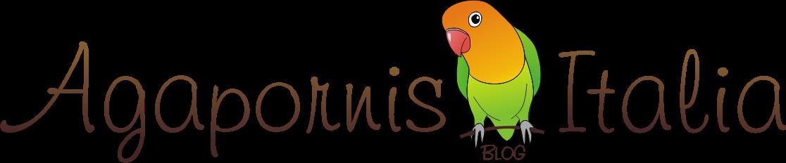 AgapornisItalia.com il più amato sito dedicato ai pappagallini.