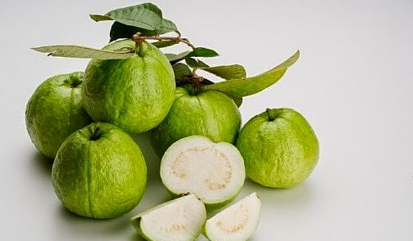 Nanbaenda blog amazing health benefits of guava seeds that you guava seeds especially when ingested whole are useful for those suffering from constipation because of their stimulant laxative effect ccuart Image collections