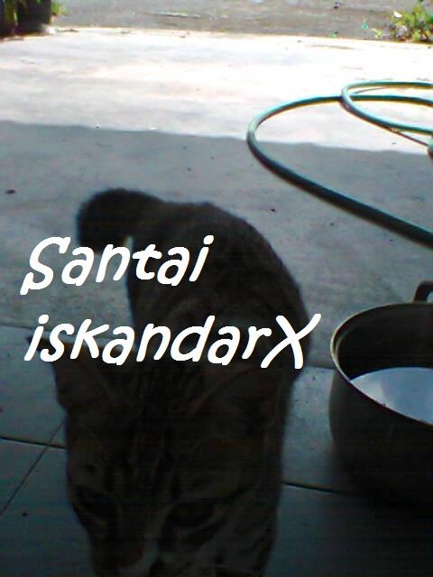 iskandarx.blogspot.com, Faizal tengah rehat serta minum air da, santai, Faizal, Jupiter, Pluto, Charlicaplin, Neptune, Naili, Laili, Laila, Solehah, Puteh