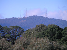 A view of the Dandenong Ranges