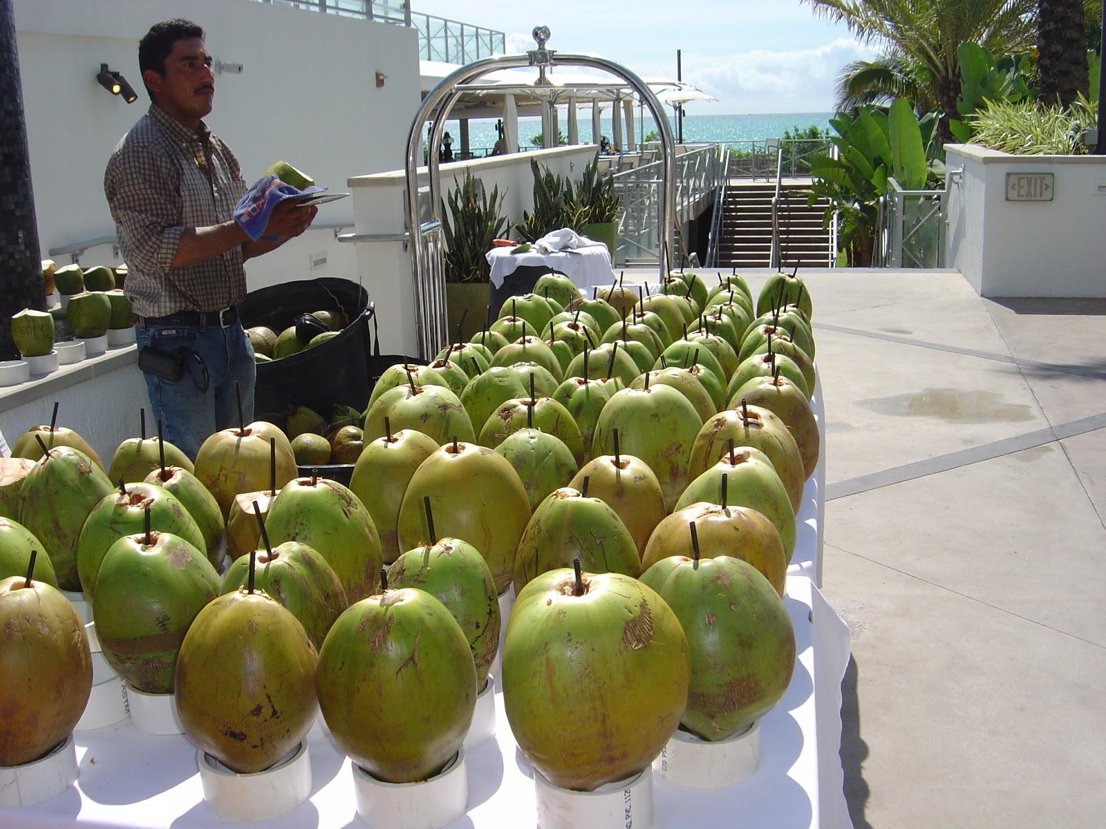how to keep bananas fresh in florida