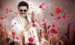 Venkatesh photos from Radha movie-thumbnail