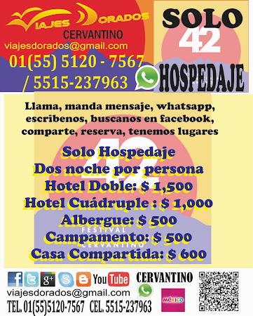 Hotel, Casas, Campamento, Albergue