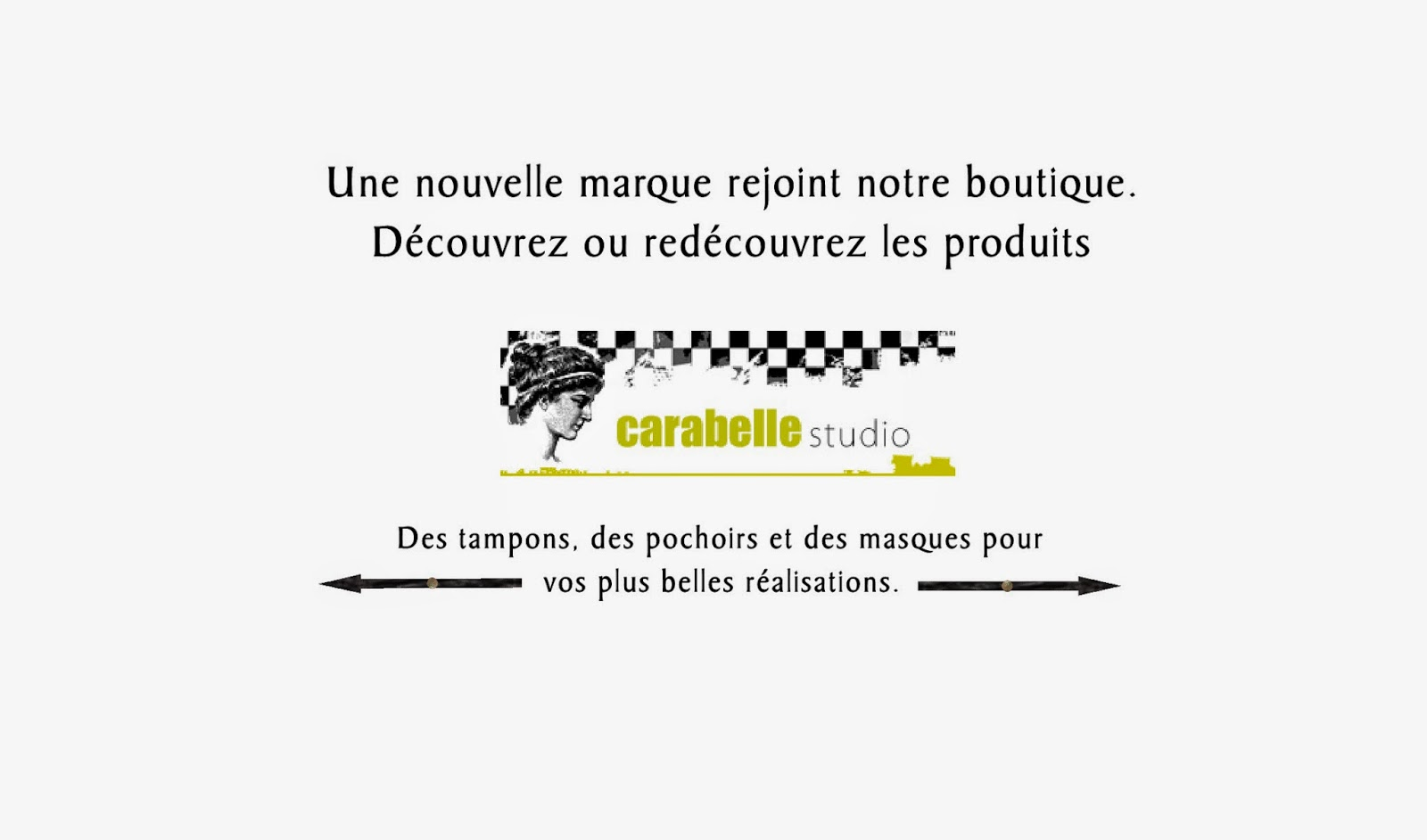 http://www.aubergedesloisirs.com/36_carabelle-studio