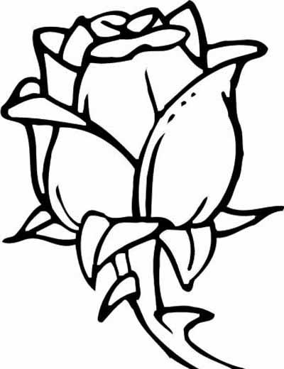 Sparet er tjent blomster tegninger l r at tegne for How to draw a hard flower