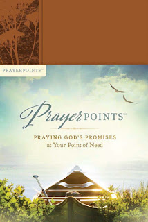 Prayer Points, Praying God's Promise, Christian, Book, Devotional