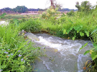 "Agriculture  Picture;img src=""http://1.bp.blogspot.com/-yX2fmvo0Yso/VcBM_0eMP2I/AAAAAAAAA1k/XQGnPjlhuy8/s1600/800px-Pump-enabled_Riverside_Irrigation_in_Comilla%252C_Bangladesh%252C_25_April_2014.jpg"" alt=""Agriculture  Picture"" />"