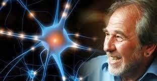 dr. Bruce Lipton PhD, pracovník v oblasti buněčné biologie