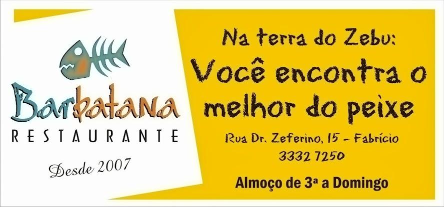 BARBATANA RESTAURANTE -  FABRÍCIO / UBERABA MG