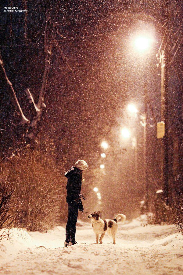 girl playing with her dog and enjoying snow fall