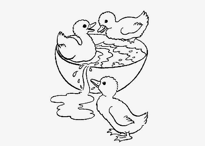 free baby duck coloring pages - photo#31