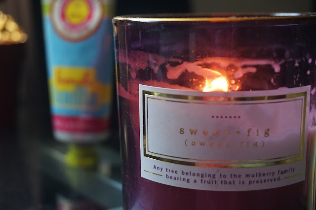 dw homes sweet fig candle