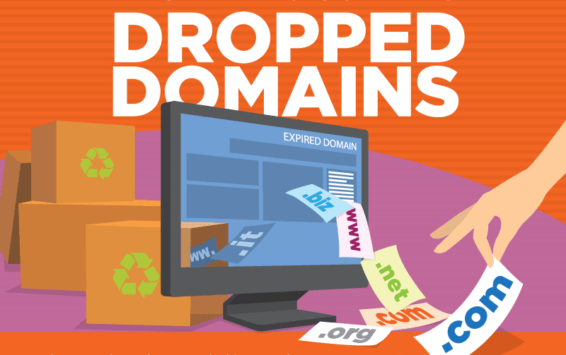 The Beginner's Guide to Dropped Domains - #infographic